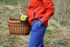 softshellové kalhoty pro dospělé podle Ottobre woman - Budilka.cz